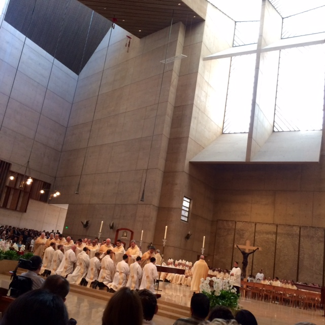 Nine men were ordained to the ministry of priesthood in the Archdiocese of Los Angeles. Deo Gratias!